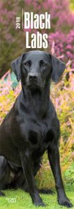 Black Labs 2018 Slim Calendar