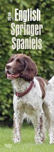 English Springer Spaniels 2018 Slim Calendar