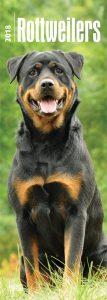 Rottweilers 2018 Slim Calendar