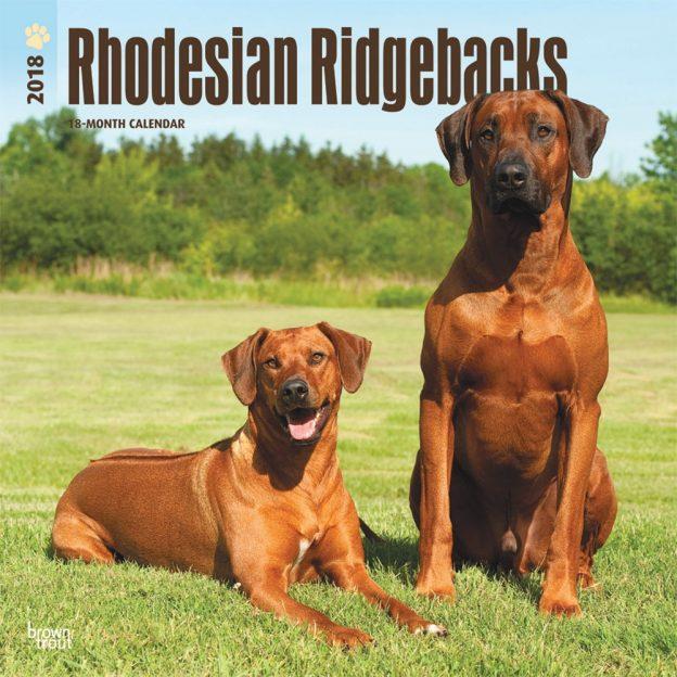 Rhodesian Ridgebacks 2018 12 X 12 Inch Monthly Square Wall Calendar