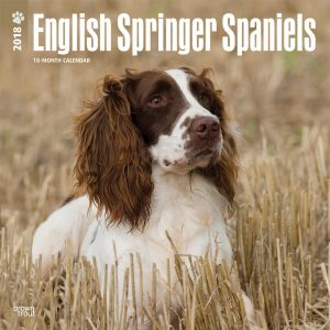 English Springer Spaniels International Edition 2018 12 X 12 Inch Monthly Square Wall Calendar