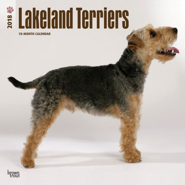 Lakeland Terriers 2018 12 X 12 Inch Monthly Square Wall Calendar
