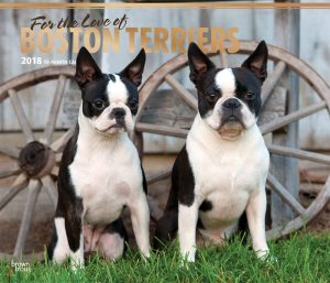 For The Love Of Boston Terriers 2018 14 X 12 Inch Monthly Deluxe Wall Calendar With Foil Stamped Cover