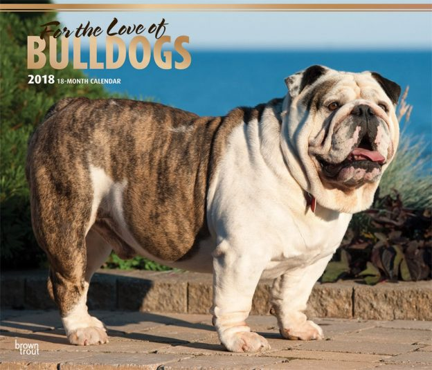 For The Love Of Bulldogs 2018 14 X 12 Inch Monthly Deluxe Wall Calendar With Foil Stamped Cover