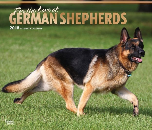 For The Love Of German Shepherds 2018 14 X 12 Inch Monthly Deluxe Wall Calendar With Foil Stamped Cover