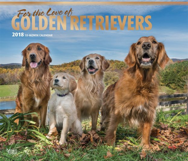 For The Love Of Golden Retrievers 2018 14 X 12 Inch Monthly Deluxe Wall Calendar With Foil Stamped Cover