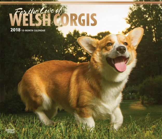 For The Love Of Welsh Corgis 2018 14 X 12 Inch Monthly Deluxe Wall Calendar With Foil Stamped Cover