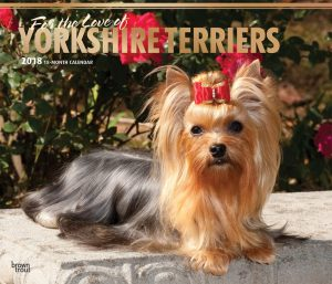 For The Love Of Yorkshire Terriers 2018 14 X 12 Inch Monthly Deluxe Wall Calendar With Foil Stamped Cover