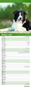 Border Collies 2019 6.75 x 16.5 Inch Monthly Slimline Wall Calendar, Animals Dog Breeds Collies