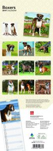 Boxers 2019 6.75 x 16.5 Inch Monthly Slimline Wall Calendar, Dog Canine