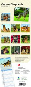 German Shepherds 2019 6.75 x 16.5 Inch Monthly Slimline Wall Calendar, Dog Canine Police