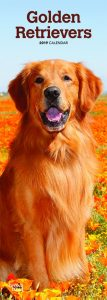 Golden Retrievers 2019 6.75 x 16.5 Inch Monthly Slimline Wall Calendar, Dog Canine Goldie