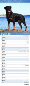 Rottweilers 2019 6.75 x 16.5 Inch Monthly Slimline Wall Calendar, Dog Canine Rott