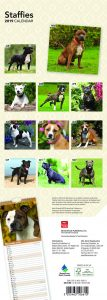 Staffies 2019 6.75 x 16.5 Inch Monthly Slimline Wall Calendar, Dog Canine Staffordshire Bull Terriers