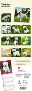Westies 2019 6.75 x 16.5 Inch Monthly Slimline Wall Calendar, Toy Dog Canine