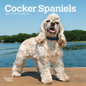Cocker Spaniels 2019 7 x 7 Inch Monthly Mini Wall Calendar