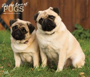 For the Love of Pugs 2020 14 x 12 Inch Monthly Deluxe Wall Calendar with Foil Stamped Cover, Animals Dog Breeds