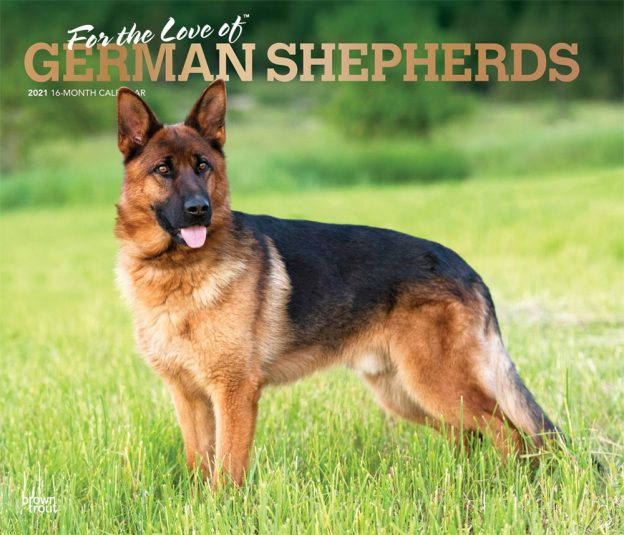 For the Love of German Shepherds 2021 14 x 12 Inch Monthly Deluxe Wall Calendar with Foil Stamped Cover, Animal Dog Breeds