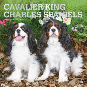Cavalier King Charles Spaniels 2021 12 x 12 Inch Monthly Square Wall Calendar with Foil Stamped Cover, Animals Dog Breeds Puppies