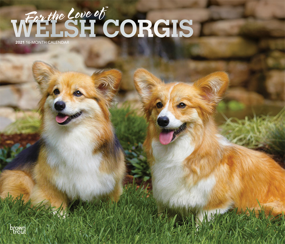 For the Love of Welsh Corgis 2021 14 x 12 Inch Monthly Deluxe Wall Calendar with Foil Stamped Cover, Animal Dog Breeds Corgi