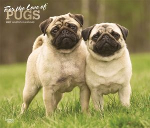 For the Love of Pugs 2021 14 x 12 Inch Monthly Deluxe Wall Calendar with Foil Stamped Cover, Animals Dog Breeds