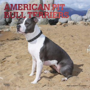 American Pit Bull Terriers 2022 12 x 12 Inch Monthly Square Wall Calendar with Foil Stamped Cover, Animals Dog Breeds DogDays