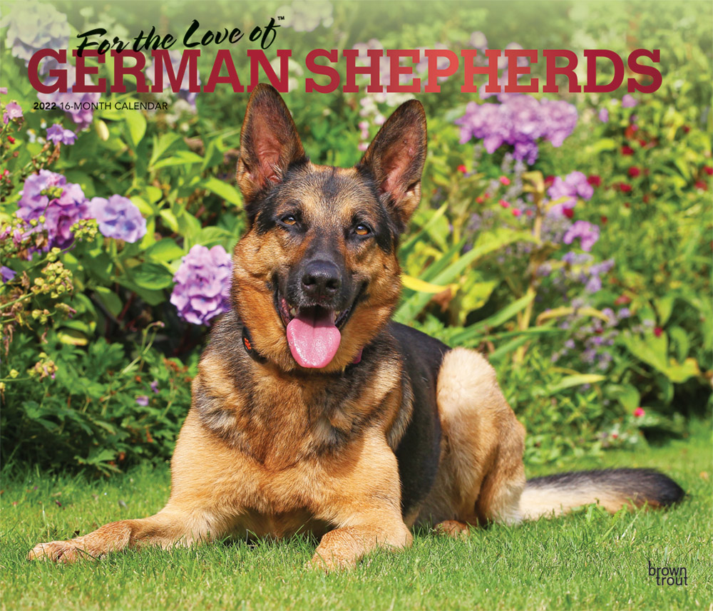 For the Love of German Shepherds 2022 14 x 12 Inch Monthly Deluxe Wall Calendar with Foil Stamped Cover, Animal Dog Breeds DogDays